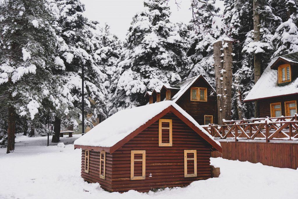 opter pour une extension de maison en bois